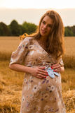 A young pregnant girl among wheat fields. Girl in a gentle way expectant mother. Beautiful country landscape. Photos for magazines, posters and websites Royalty Free Stock Images