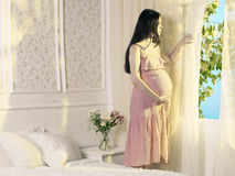 Young pregnant woman stock images