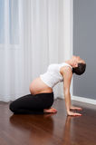 Young pregnant woman doing gymnastics Royalty Free Stock Photography