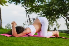 Young pregnant woman doing yoga outdoors. Beautiful young pregnant woman doing yoga in park. Healthy lifestyle. Sky and trees in background. Dog pose Stock Photos