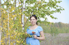 Young pregnant woman in field near birch tree Stock Photos