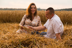 A young pregnant woman with her husband among the wheat field Stock Images