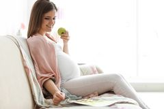 Young pregnant woman holding apple. At home Stock Images