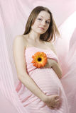 Young Pregnant Woman In Pink Royalty Free Stock Photo
