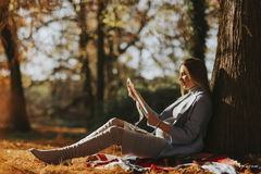 Young pregnant woman looking fetus ultrasound images in the park. Young pregnant woman looking fetus ultrasound images in the autumn park stock images
