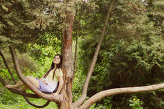 Young pregnant woman outdoor in nature Stock Image