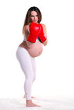 Young pregnant woman in a pair of boxing gloves royalty free stock images