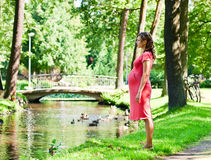Young pregnant woman in park Royalty Free Stock Images