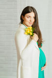 Young pregnant woman in a turquoise dress Royalty Free Stock Photography