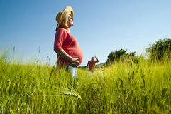 Young pregnant woman waiting her man in the wheat field. Royalty Free Stock Image