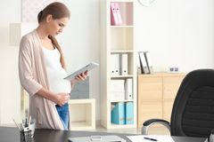 Young pregnant woman working in office. Young pregnant woman working in home office Royalty Free Stock Photos