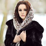 Young pretty beautiful woman in winter Stock Image