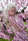 Young pretty blond woman in blooming garden Royalty Free Stock Photos