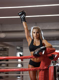 Young pretty boxer woman standing on ring Stock Images