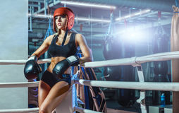 Young pretty boxer woman standing on ring Royalty Free Stock Photography