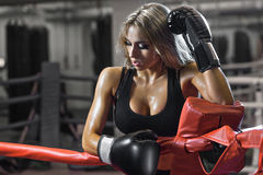 Young pretty boxer woman standing on ring Royalty Free Stock Images