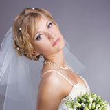 Young pretty bride portrait Royalty Free Stock Photo