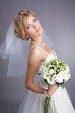 Young pretty bride portrait Royalty Free Stock Photos