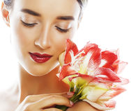 Young pretty brunette real woman with red flower amaryllis close Royalty Free Stock Images