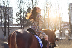 Young pretty brunette riding horse outdoor. Sun rays light the hair. Stock Photo