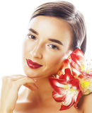Young pretty brunette woman with red flower amaryllis close up i Stock Image