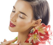 Young pretty brunette woman with red flower amaryllis close up isolated on white background. Fancy fashion makeup Royalty Free Stock Images