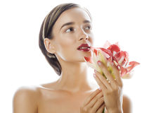 Young pretty brunette woman with red flower amaryllis close up isolated on white background. Fancy fashion makeup Stock Photos