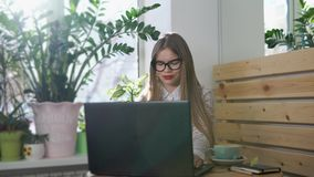 Young pretty business woman working behind her laptop in a bright room. Young pretty business woman working with her laptop in a bright room with green flowers stock footage