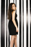 Young pretty cool fat brunette woman with long hair fashion dres Stock Images