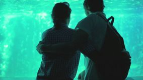 Young pretty couple admiring fish swimming at the aquarium and hugging. 1920x1080. Hd stock footage