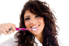Young pretty female holding toothbrush Royalty Free Stock Photo
