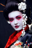 Young pretty geisha in kimono with sakura and Royalty Free Stock Images