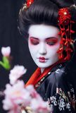 Young pretty geisha in kimono with sakura and Royalty Free Stock Photos