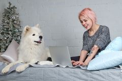 young pretty girl with blond hair working with laptop on the sofa with his large white dog. Christmas tree and joyful expression. stock photo