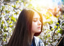 Young pretty girl enjoy spring park. Relax picture Royalty Free Stock Image