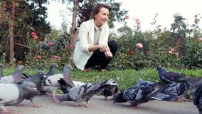 Young pretty girl feeds pigeons in park. Flock of birds eating a loaf bread. Beautiful European girl feeds pigeons. Happy cute female woman feeding birds on stock video