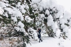 A young, pretty girl poses under a large snow-covered pine fores stock photo