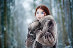 Young pretty girl with red hair Royalty Free Stock Photo