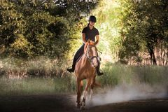 Young pretty girl riding a horse with backlit leaves behind Royalty Free Stock Photography