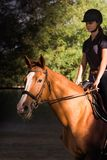 Young pretty girl riding a horse with backlit leaves behind Stock Photo