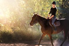 Young pretty girl riding a horse with backlit leaves behind Royalty Free Stock Photo