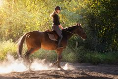 Young pretty girl - riding a horse with backlit leaves behind Stock Image