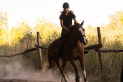 Young pretty girl riding a horse with backlit leaves behind Stock Image