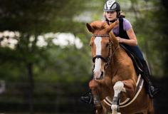 Young pretty girl riding a horse. Jumping over hurdle with in spring time Royalty Free Stock Photos