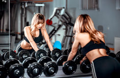 Young pretty girl work out in the gym. Portrait of young pretty girl training in the gym Stock Images