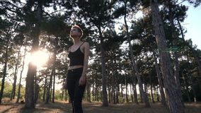 Young Pretty Punk Girl in Collar and Black Cloth with Pink Hair walking in Pine Forest at Sunset Time. Young Pretty Pierced Punk Girl in Collar and Black Cloth stock video