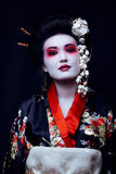 Young pretty real geisha in kimono with sakura and Royalty Free Stock Image