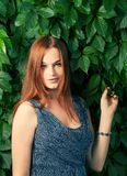 Young pretty red haired women standing against ivy wall Stock Photos