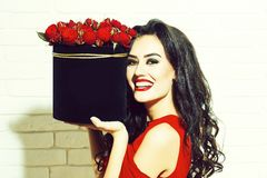 Sexy girl with red roses. Young pretty sexy woman or girl with cute smiling face and long brunette hair has fashionable makeup with red lipstick and dress holds royalty free stock photos