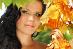 Young pretty woman in the autumn Royalty Free Stock Image